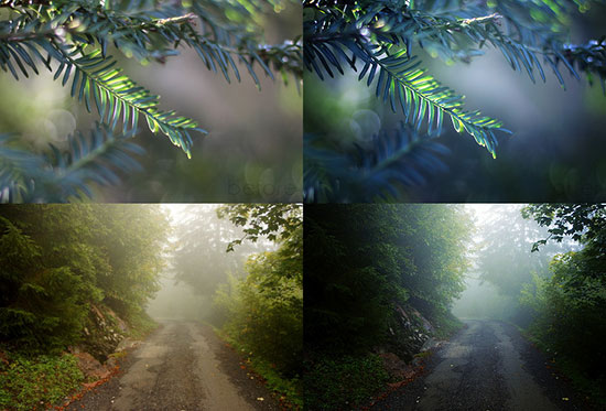 Free-night_photoshop_actions-download