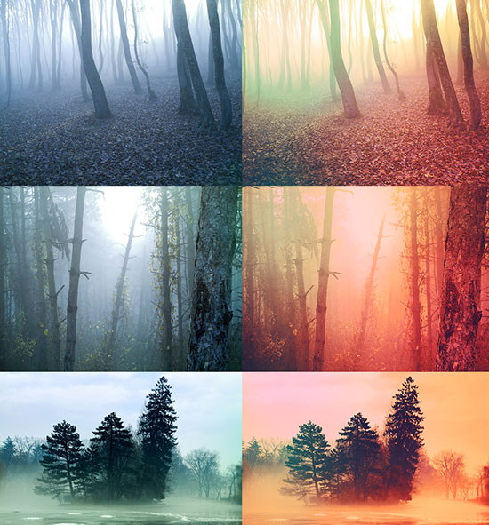 toasted_forest_free-photoshop-effects
